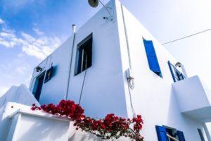 immobilier cofim investir dans le neuf