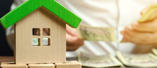 Biens immobilier dans le canton de fayence